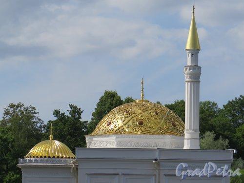 Екатерининский парк.  Турецкая баня. Купола. фото июль 2015 г.