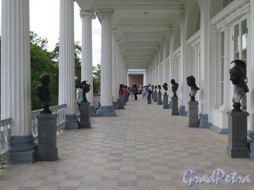 Екатерининский парк (Пушкин). Камеронова галерея, Вид на галерею второго этажа. фото июль 2015 г.