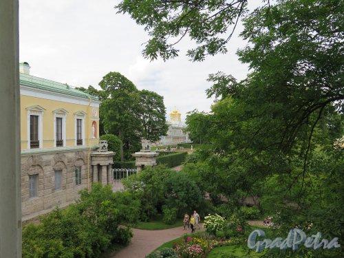 Екатерининский парк (Пушкин). Камеронова галерея, Вид на Фрейлинский садик и Большой Дворец. фото июль 2015 г.