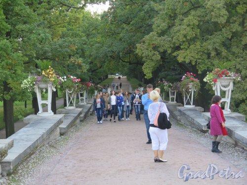 Екатерининский парк (Пушкин). Пандус. Вид со стороны Висячего сада. фото сентябрь 2015 г.