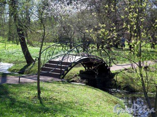 Ботанический сад. Железный декоративный мостик через канал. фото май 2016 г.