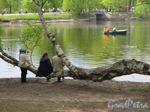 Центральный культуры и отдыха парк (ЦПКиО). Берег пруда. фото май 2016 г.