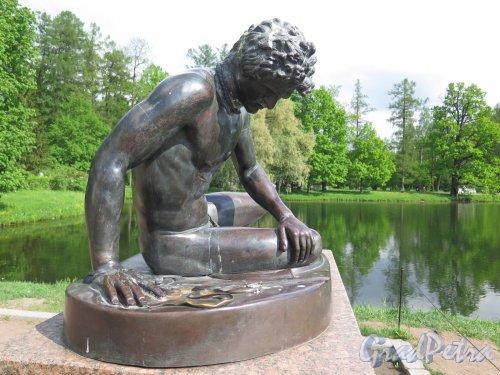 Екатерининский парк (Пушкин). Павильон «Грот». Статуя «Умитаюший галл» на площадке перед павильоном. фото май 2016 г.