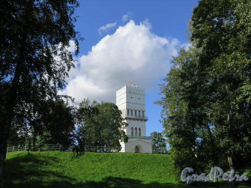 Александровский парк (Пушкин), лит. Ж. Район «Зверинца» с Белой Башней. фото август 2016 г.