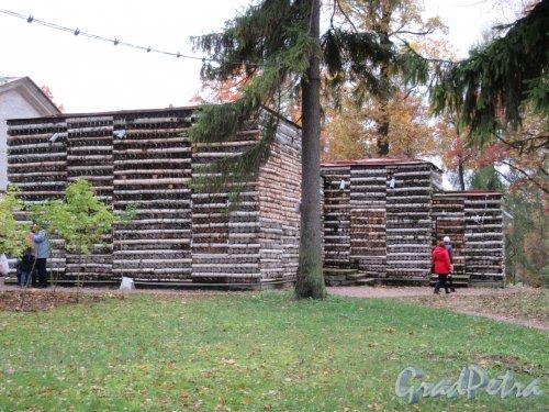 Гатчинский парк (Дворцовый). Павильон «Березовый домик». Вид сзади. фото октябрь 2017 г.