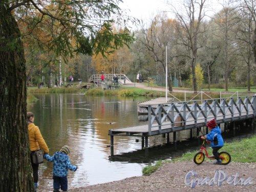 Гатчинский парк (Дворцовый). Лодочная станция. фото октябрь 2017 г.