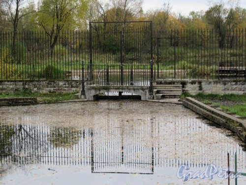 Гатчинский парк (Дворцовый). Запруда на границе с парком «Зверинец». фото октябрь 2017 г.