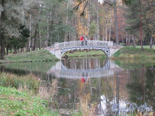 Гатчинский парк (Дворцовый). Железный мостик в районе у Захарова острова. фото октябрь 2017 г.