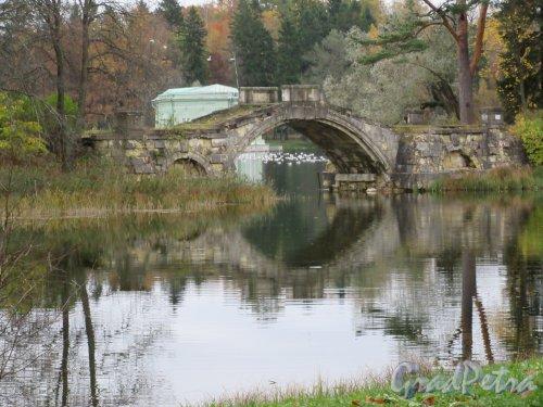 Гатчинский парк (Дворцовый). Белое озеро. Горбатый мостик. Вид со стороны Серебряного озера. фото октябрь 2017 г.
