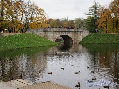Гатчинский парк (Дворцовый). Карпин мост, арх. В. Бренна, (разрушен в 1944, восстановлен в1980-е гг.) . фото октябрь 2017 г.