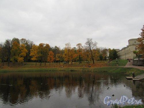 Гатчинский парк (Дворцовый). Карпин пруд. Общий вид. фото октябрь 2017 г.