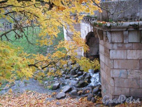 Гатчинский парк (Дворцовый). Карпин Мост. Каскад у Моста. фото октябрь 2017 г.