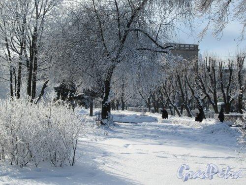 Сад без названия у станции метро «Кировский завод» часть сада вдоль Пр. Стачек. Фото февраль 2018 г.