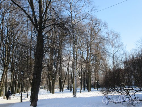Сад Сан-Галли (Лиговский пр., 60-62-Ул. Черняховского, 62). Общий вид сада. фото февраль 2018 г.