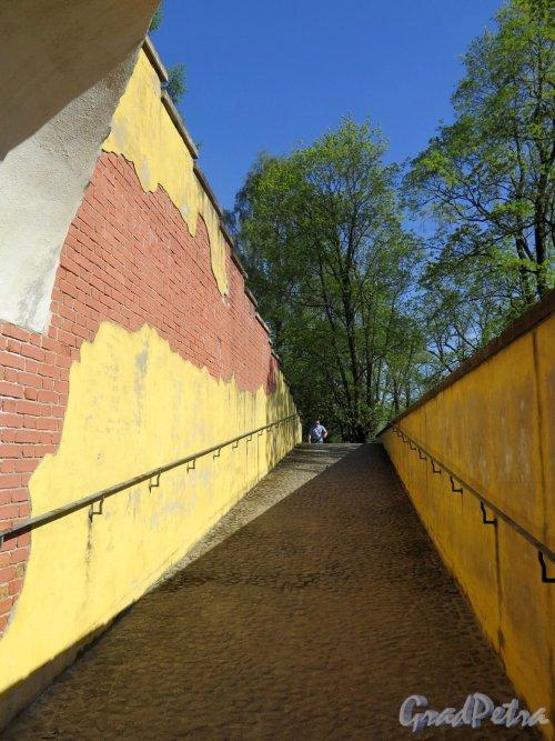Екатерининский парк (Пушкин). Башня-руина. Подъем на башню. фото май 2018 г.