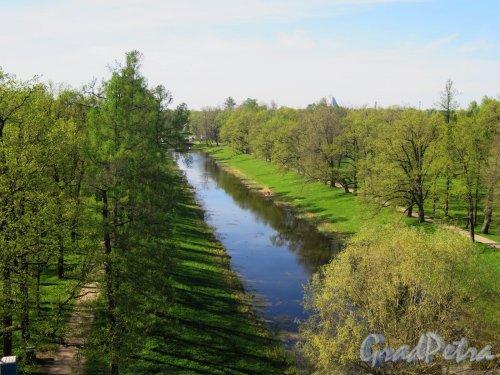 Екатерининский парк (Пушкин). Виттоловский канал. Вид с верхней площадки Башни-руины. фото май 2018 г.
