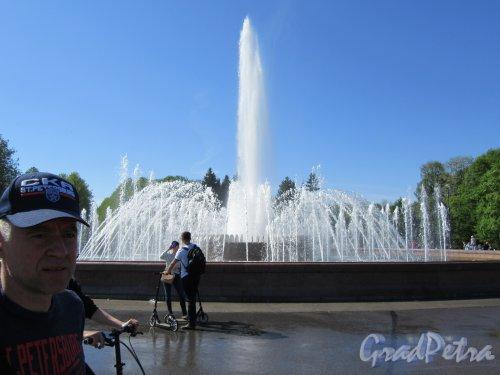 Приморский  парк Победы. Центральная площадь. Общий вид. фото май 2018 г.