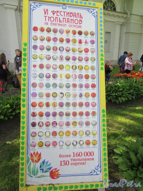 ЦПКиО. VI фестиваль тюльпанов в 2018 г. Информационный стенд. фото май 2018 г.
