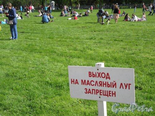 ЦПКиО. VI фестиваль тюльпанов в 2018 г. Запретительный указатель на Масляном лугу. фото май 2018 г.