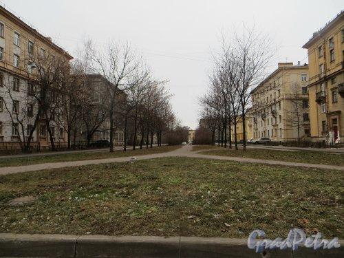 Перспектива Огородного переулка от проспекта Стачек в сторону улицы Маршала Говорова. Фото 29 ноября 2014 года.