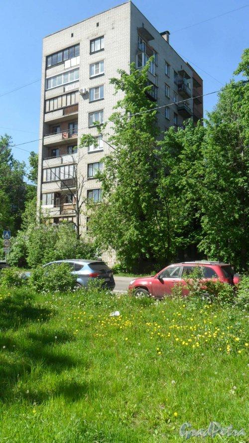 Альпийский переулок, дом 4. 9-этажный жилой дом серии 1-528кп40 1968 года постройки. 1 парадная, 45 квартир. Фото 21 мая 2018 года.
