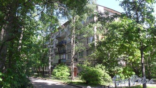 Альпийский переулок, дом 19, корпус 1. 5-этажный жилой дом серии 1ЛГ-502-6 1965 года постройки. 6 парадных, 90 квартир. Фото 25 мая 2018 года.