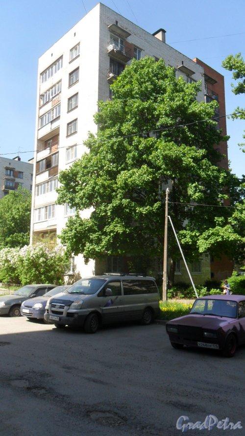Альпийский переулок, дом 11, корпус 2. 9-этажный жилой дом серии 1-528кп40 1968 года постройки. 1 парадная, 45 квартир. Фото 25 мая 2018 года.