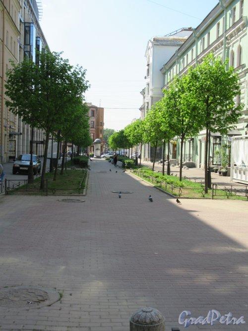 Тележный переулок. Общий вид от Конной ул. в сторону Невского пр. фото май 2018 г.