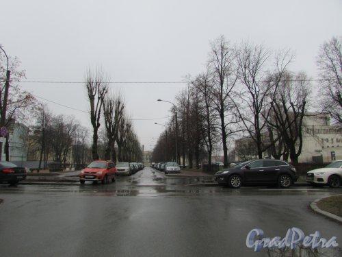 Бульвар в сквере без названия № 1101 в Подъездном переулке, д.6, д.8, д.10 и д.12. Фото 24 декабря 2019 года.