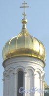 г. Пушкин, Соборная пл., дом 1. Собор Святой Великомученицы Екатерины. Один из куполов. Фото 10 марта 2014 г.