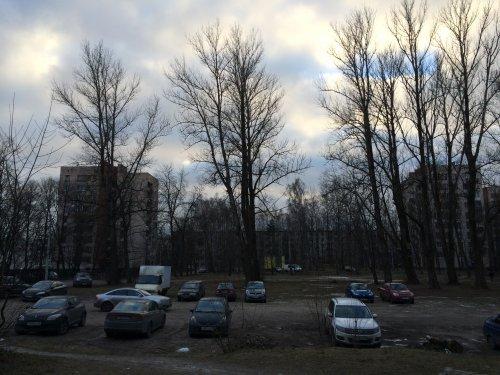 Сквер, ставший «камнем преткновения» для развития застроенной территории квартала «Полюстрово-43»