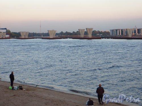 Строительство Западного скоростного диаметра в устье Малой Невки. Вид со стороны Парка 300-летия Петербурга. Фото 26 сентября 2014 года.