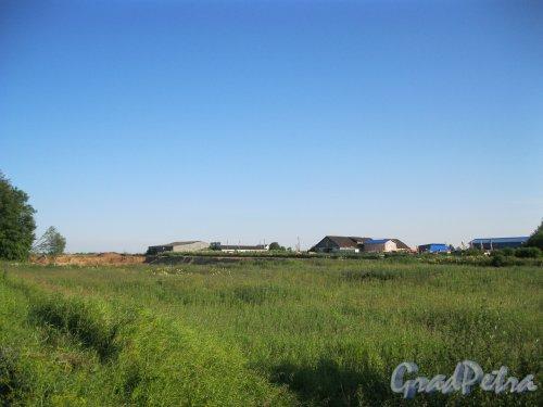Лен. обл., Гатчинский р-н, деревня Веккелево. Вид с Павловского шоссе. Фото 8 июля 2014 г.