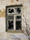 г. Красное Село, пр. Ленина, дом 99. Расселённый и заброшенный дом. Окно 1 этажа. Фото 24 февраля 2014 г.