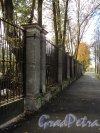 Крестовский пр., дом 12. Ограда трансформаторной подстанции. Фото 1 октября 2011 года.