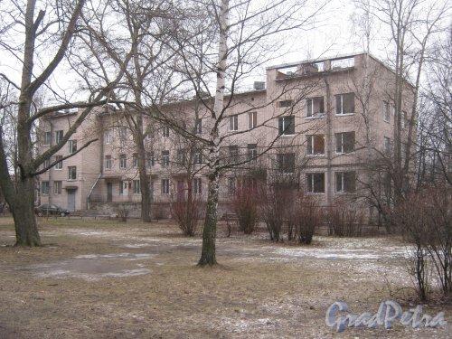 Пр. Ветеранов, дом 143, корпус 2. Вид со стороны двора дома 143. Фото февраль 2014 г.