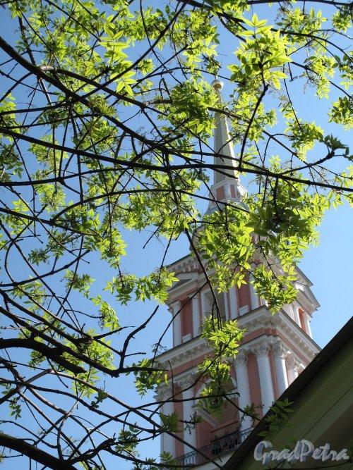 Лиговский пр., дом 128. Крестовоздвиженский казачий собор. Колокольня со стороны двора. Фото май 2011 г.