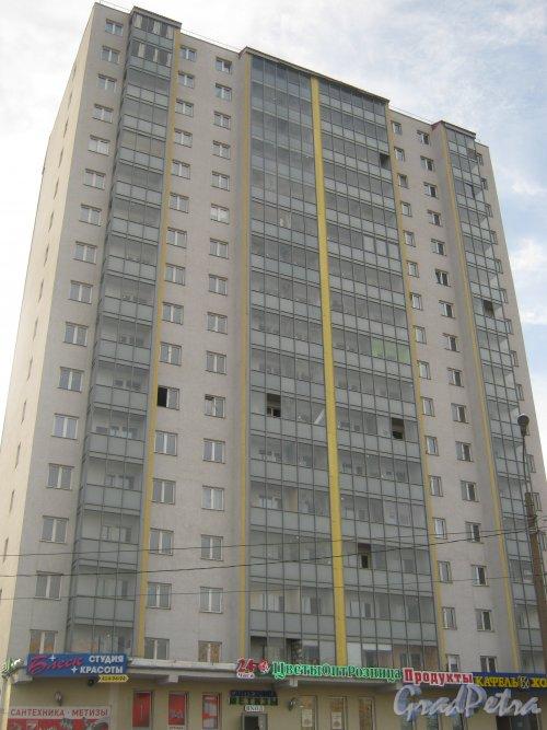 Пр. Солидарности, дом 21, корпус 3. Общий вид. Фото 9 марта 2014 г.
