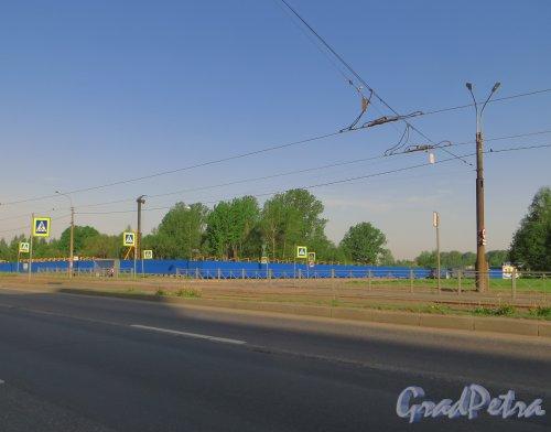 Ириновский проспект, уч. 1. Вид участка до строительства жилого комплекса «Нью-тон». Фото 25 мая 2014 года.