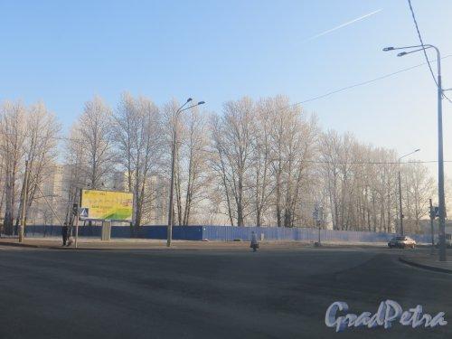 Участок на пересечение Дунайского проспекта и проспекта Космонавтов. Фото 20 ноября 2014 года.