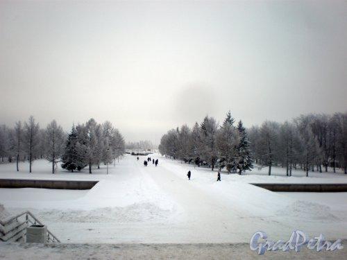 Шафировский проспект, дом 12. Общий вид территории крематория. Фото 12 января 2010 года.