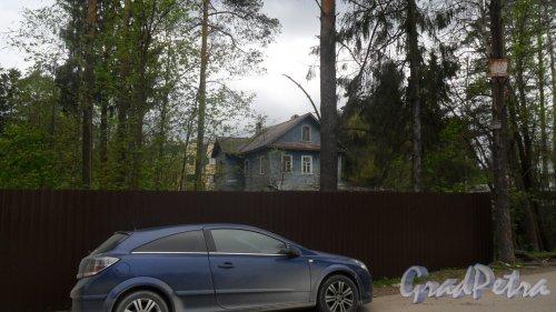 Всеволожск. Всеволожский проспект,дом 80. Фото май 2015 года.