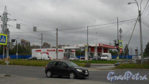Проспект Энгельса, дом 164. АЗС «Лукойл». Фото 16 августа 2015 года.