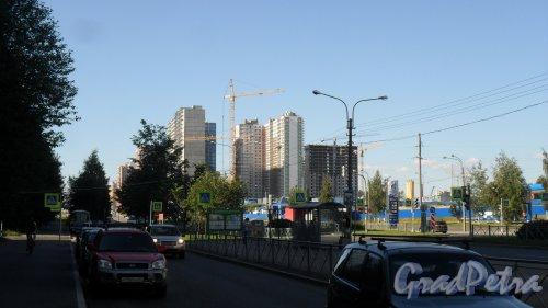 Проспект Королева. Панорама проспекта в сторону новостроек от улицы Шаврова. Фото 20 августа 2015 года.