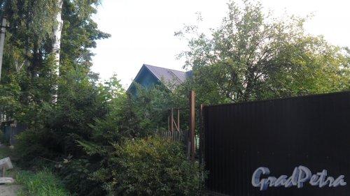 Лен. область, Всеволожский р-н, город Всеволожск. Христиновский проспект, дом 42,корпус 1. Фото 15 сентября 2015 года.