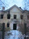 пр. Ветеранов, дом 141, корпус 2. Фрагмент заброшенного дома. Вид с Добрушской ул. Фото 19 января 2017 года.