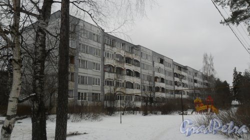 Всеволожск, Всеволожский проспект, дом 70, корпус 1. 5-этажный жилой дом 1990 года постройки. Вид дома с Константиновской улицы. Фото 4 марта 2016 года.