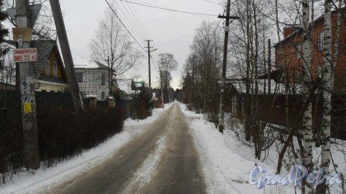 Перспектива проспекта Толстого от Всеволожского проспекта в сторону Колтушского шоссе