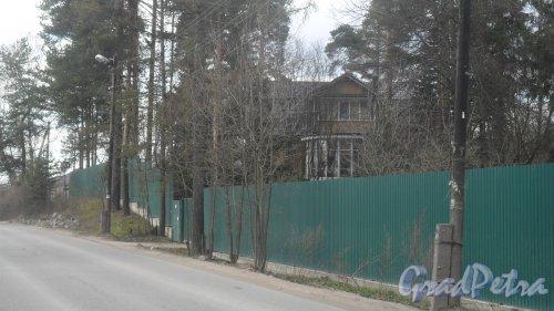 г. Всеволожск, проспект Льва Толстого, дом 7. Фото 24 апреля 2016 года.