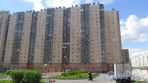 Дунайский проспект, дом 5, корпус 5. 17-этажный жилой дом 2007 года постройки. 3 парадные, 302 квартиры. Фото 16 мая 2016 года.